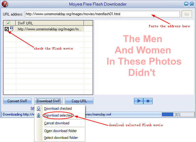 Download selected Flash files