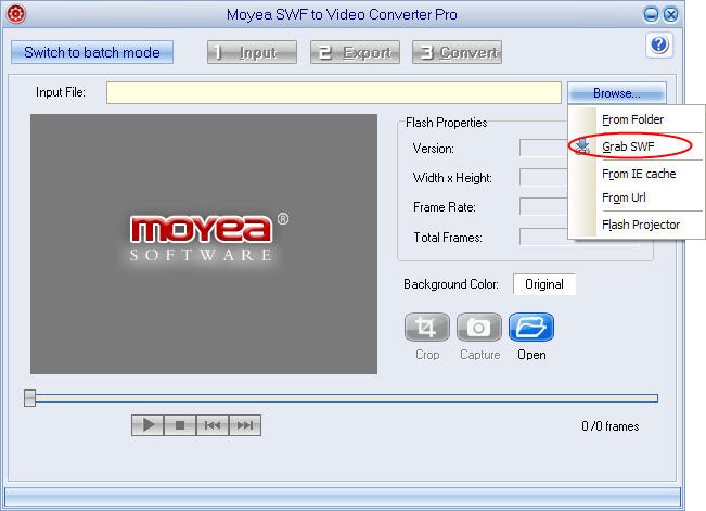 Download online  Flash animation